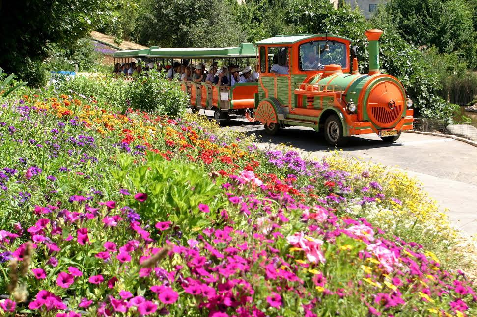 Суккот в Ботаническом саду в Иерусалиме