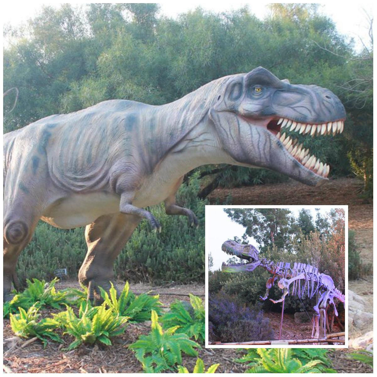«Королевство динозавров» раскинулось в Ботаническом саду в Иерусалиме