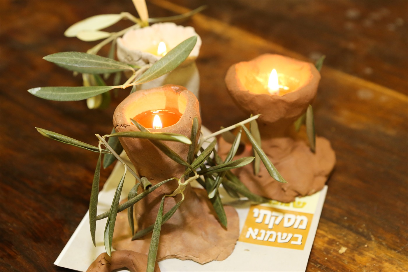 Ханукальные представления в «Шамна»: костюмированная история Израиля в оливковой роще