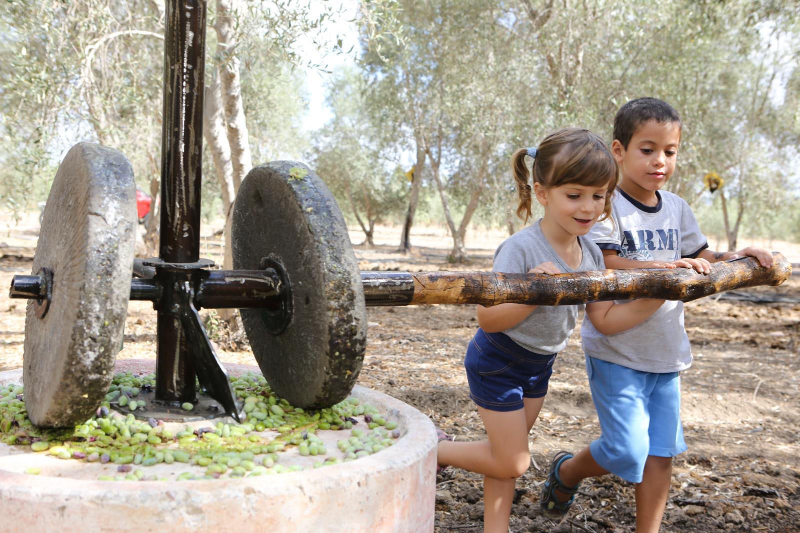 Три идеи для познавательного отдыха с детьми в ближайшую субботу в центре страны