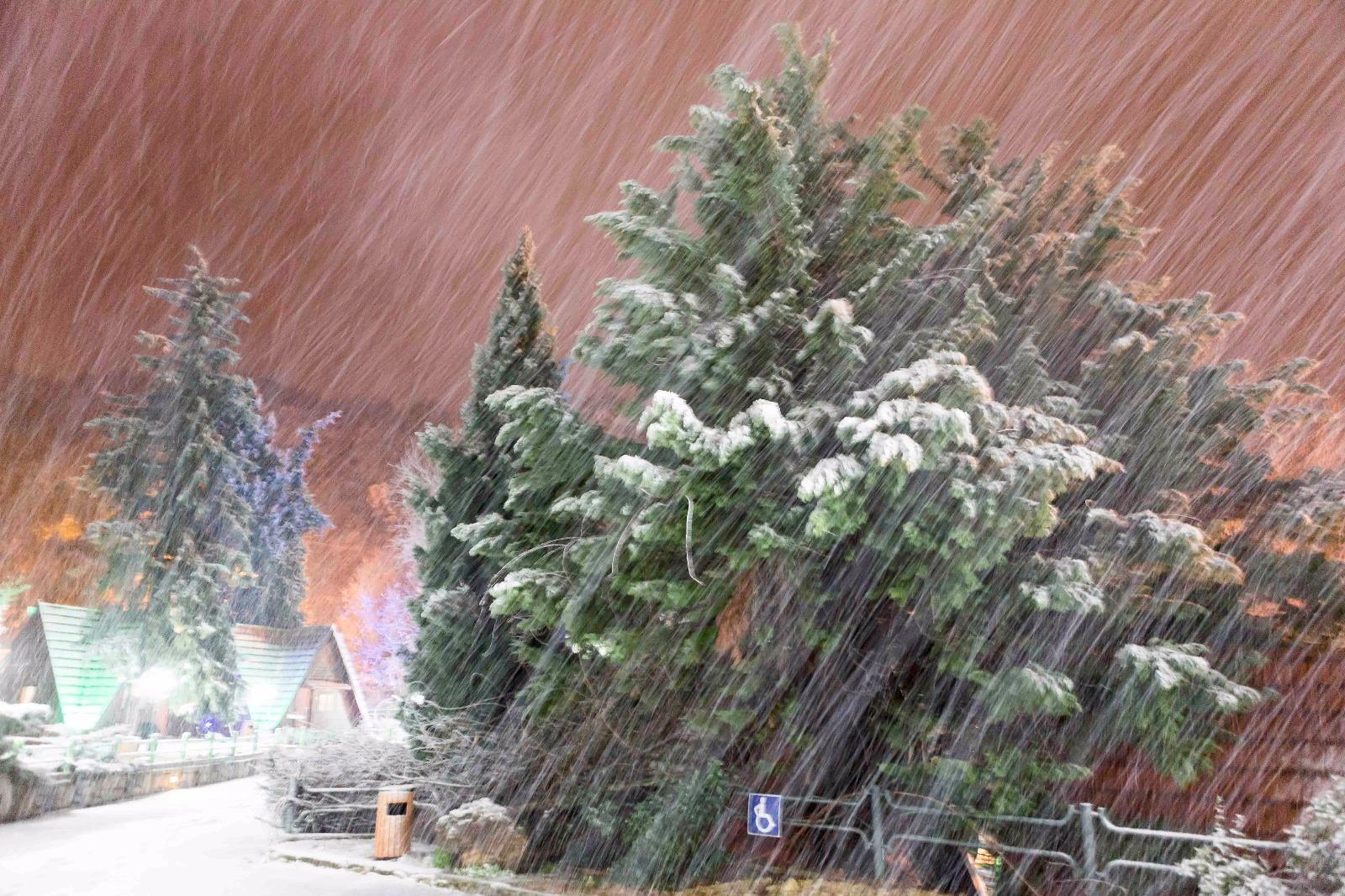 שלג בכפר הנופש רימונים נווה אטיב - 25.1.16 - צלם בן פרידמן