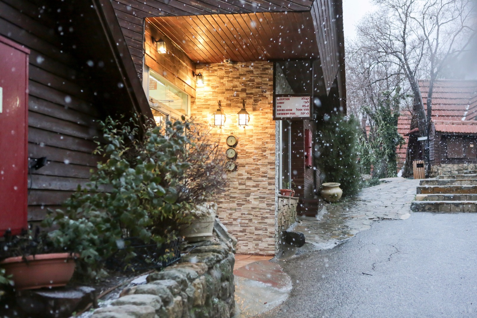 שלג בכפר הנופש רימונים נווה אטיב - 25.1.16 - צלם בן פרידמן  (5)