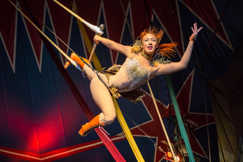 Цирк Флорентин — Circus of the world