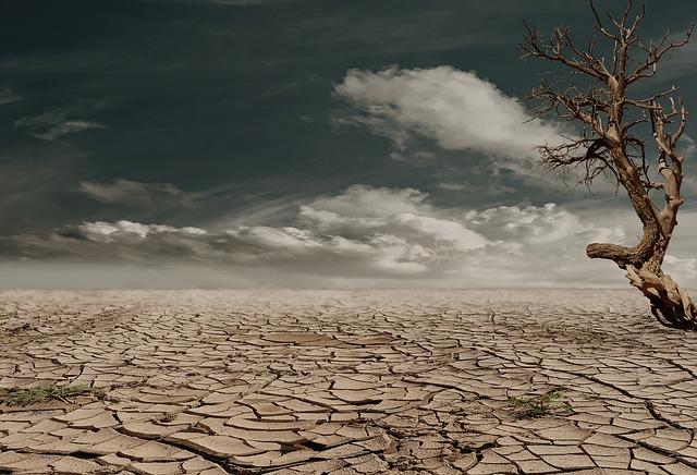 """У природы нет плохой погоды или как не превратиться в """"сушеную воблу"""""""