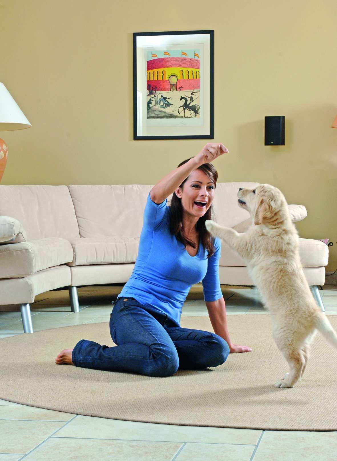 Пылесос для владельцев домашних животных Thomas Pet & Family Plus идеально очистит пространство для всей семьи – пол, мягкую мебель и воздух в доме