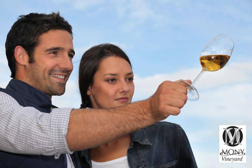 Выходные и праздники в винодельне «Мони»