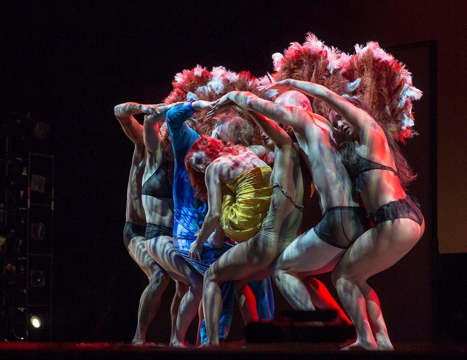 «Пилоболус» – искусство танца по обе стороны тени