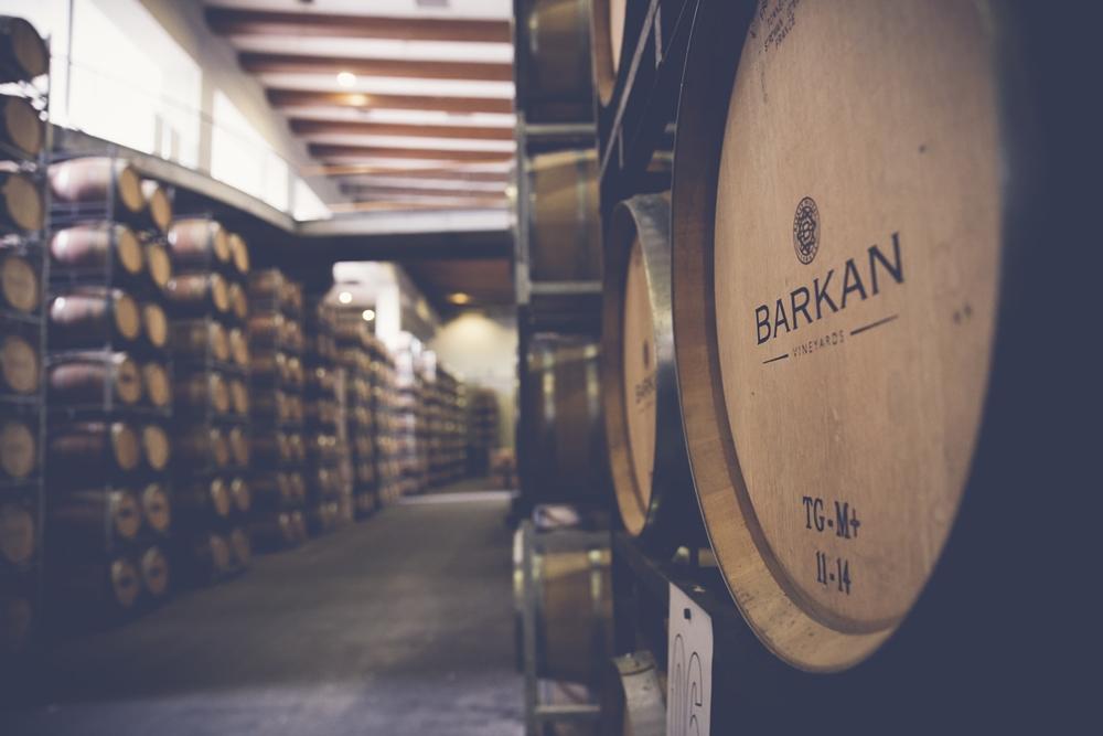 Там, где рождается вино