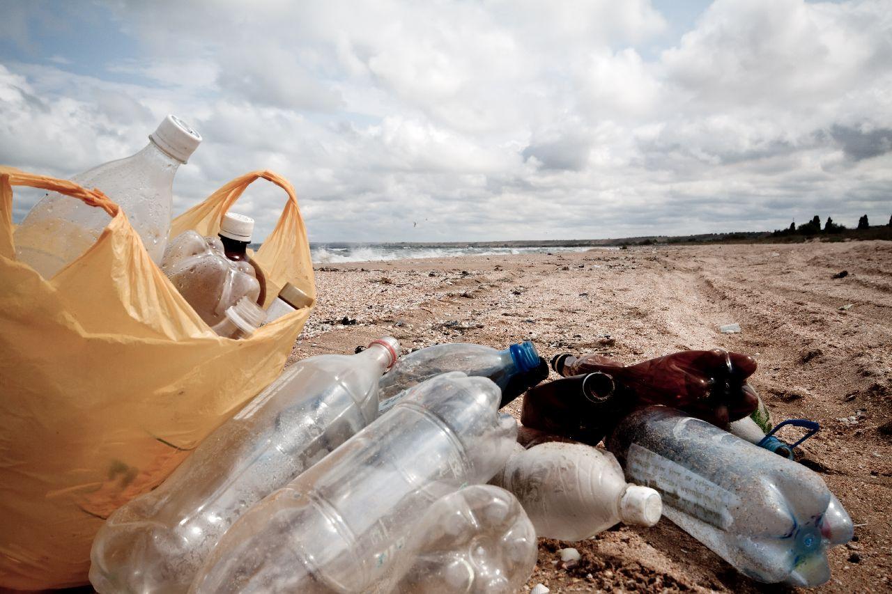 Собери бутылки – сделай мир лучше!