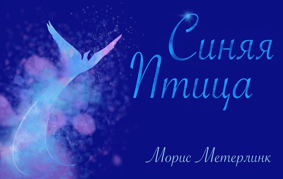 «Синяя птица» полетит над Хайфой