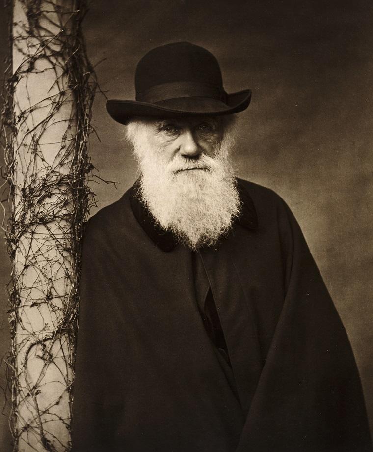 Дарвин, ты не прав?