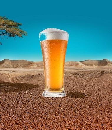 Пиво, музыка, пустыня