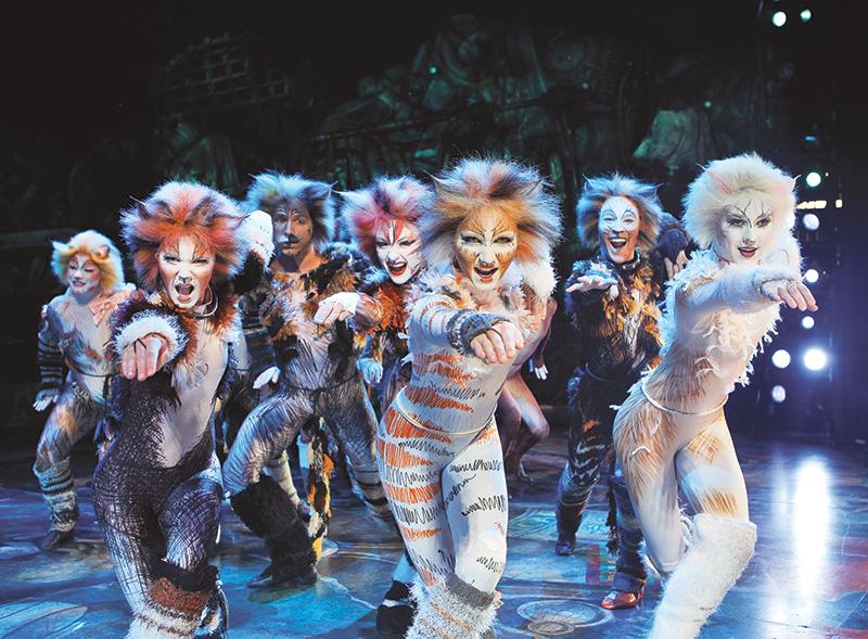 Легендарный мюзикл The Cats в Израиле