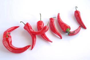 Chili line по средам