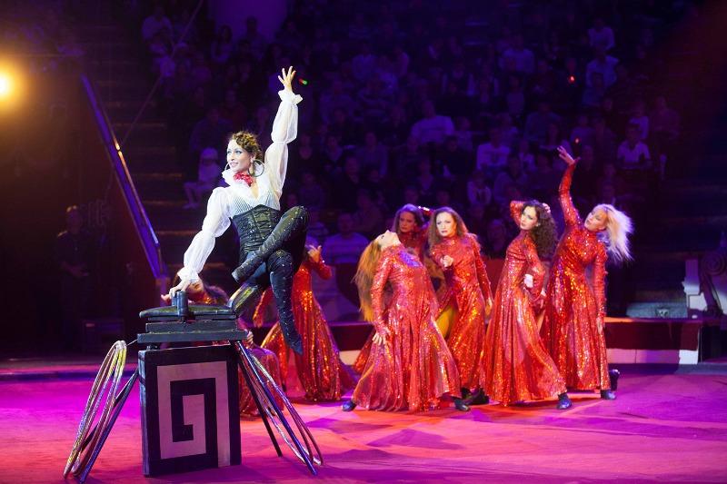 В цирке – Тарзан, акробаты и клоуны!