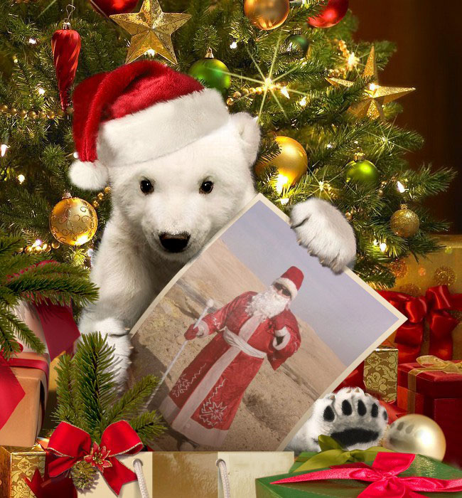 «Persona Grata» Дед Мороз