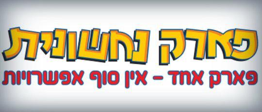 naxshonit logo